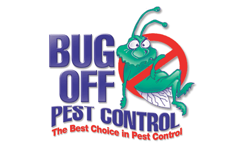 lint bugs pest control and bug