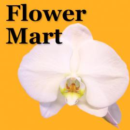 Flower mart palm springs ca psflowermart 760 773 2288 business logo business logo mightylinksfo